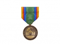 US army shop - Vyznamenání - Texas National Guard Service Medal