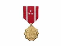 US army shop - Vyznamenání - Philippine Defense Medal WWII